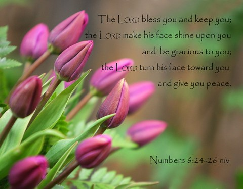 Num6-24-26--TheLordBlessYou